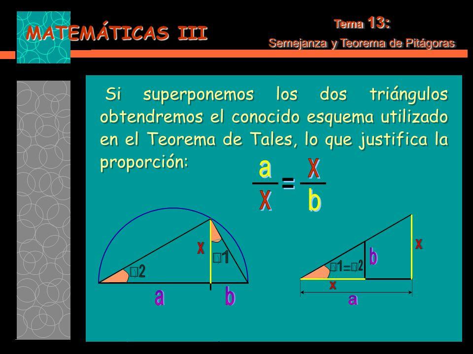 MATEMÁTICAS III Tema 13: Semejanza y Teorema de Pitágoras Tema 13: Semejanza y Teorema de Pitágoras Si superponemos los dos triángulos obtendremos el conocido esquema utilizado en el Teorema de Tales, lo que justifica la proporción: Si superponemos los dos triángulos obtendremos el conocido esquema utilizado en el Teorema de Tales, lo que justifica la proporción: