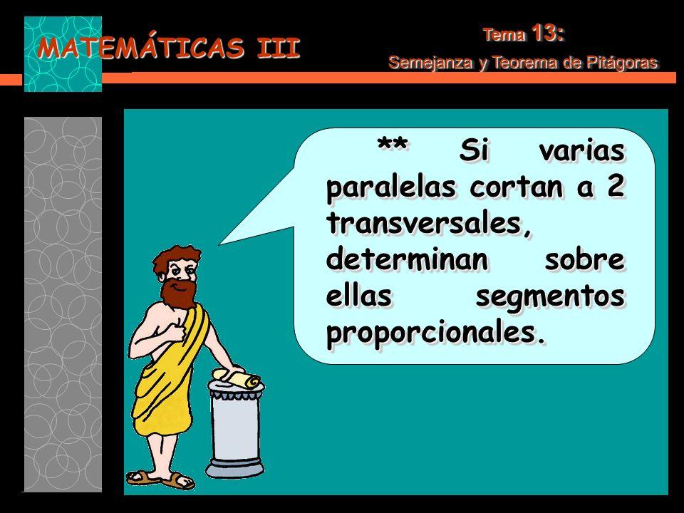 MATEMÁTICAS III Tema 13: Semejanza y Teorema de Pitágoras Tema 13: Semejanza y Teorema de Pitágoras c) Traza una perpendicular en la unión de los segmentos hasta que toque el semicírculo.