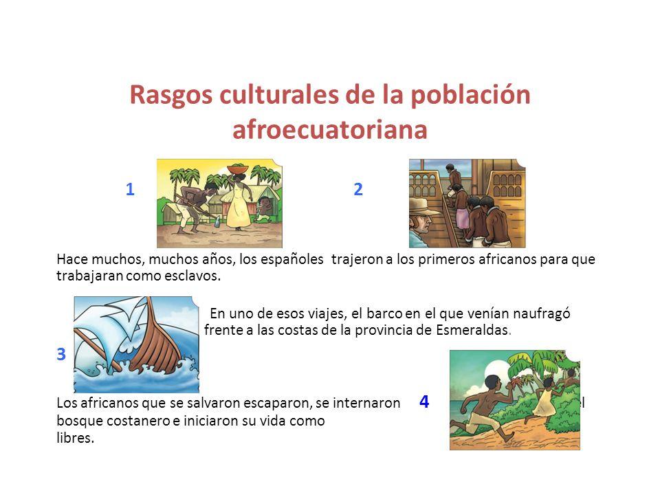 Rasgos culturales de la población afroecuatoriana 12 Hace muchos, muchos años, los españoles trajeron a los primeros africanos para que trabajaran com