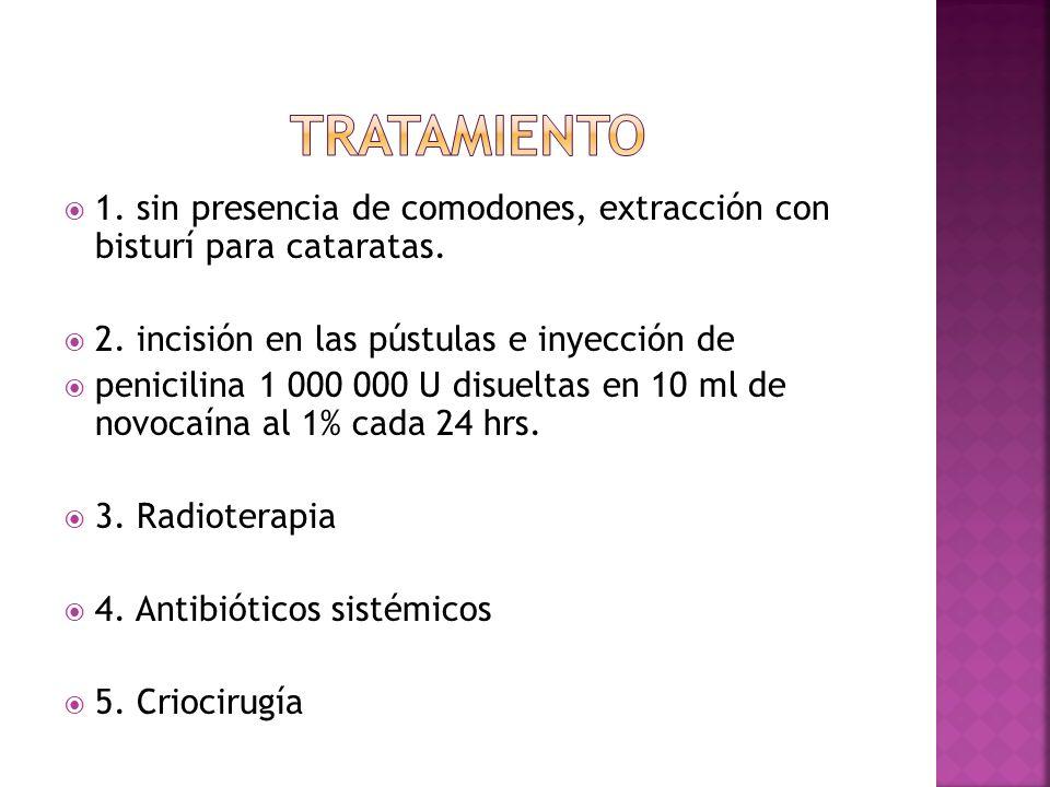  1. sin presencia de comodones, extracción con bisturí para cataratas.  2. incisión en las pústulas e inyección de  penicilina 1 000 000 U disuelta