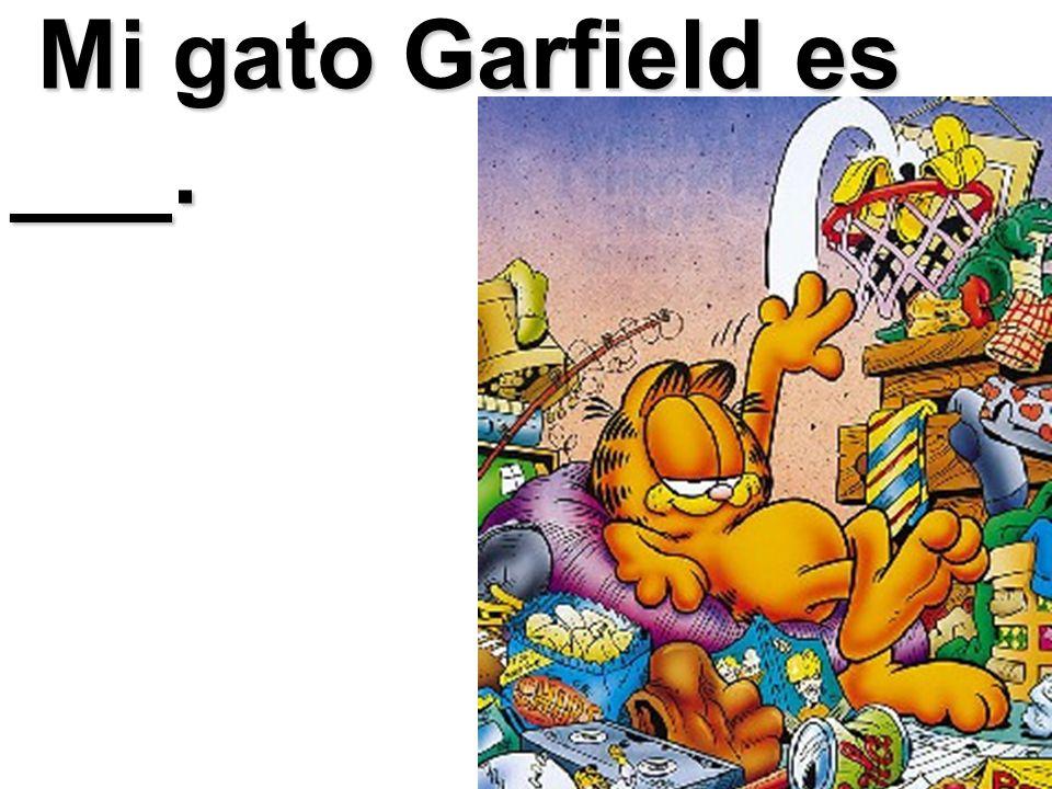 Mi gato Garfield es ___. Mi gato Garfield es ___.