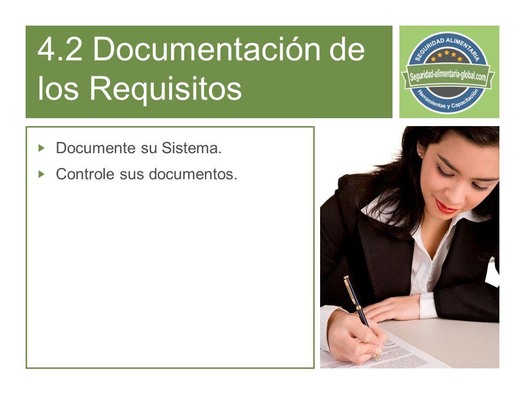 4.2 Documentación de los Requisitos Documente su Sistema. Controle sus documentos.