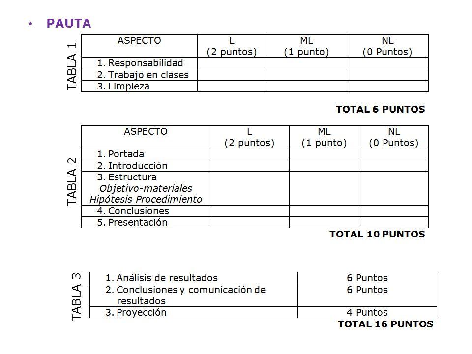 PAUTA TABLA 1 TABLA 2 TABLA 3