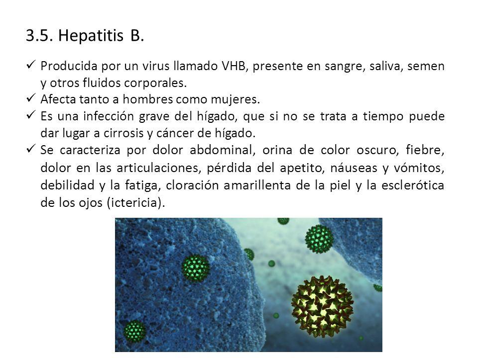 3.5.Hepatitis B.