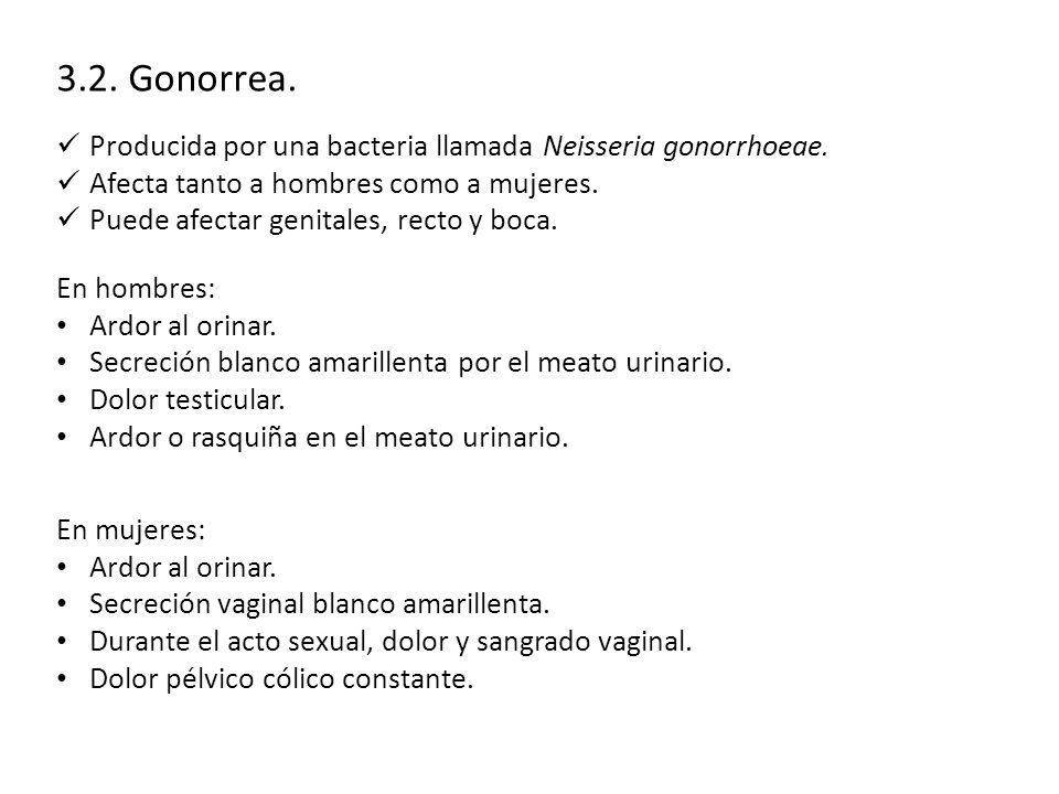 3.2.Gonorrea. Producida por una bacteria llamada Neisseria gonorrhoeae.
