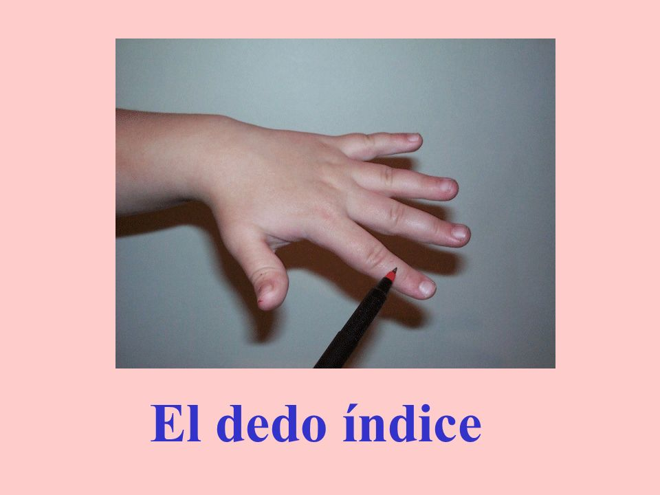 El dedo pulgar