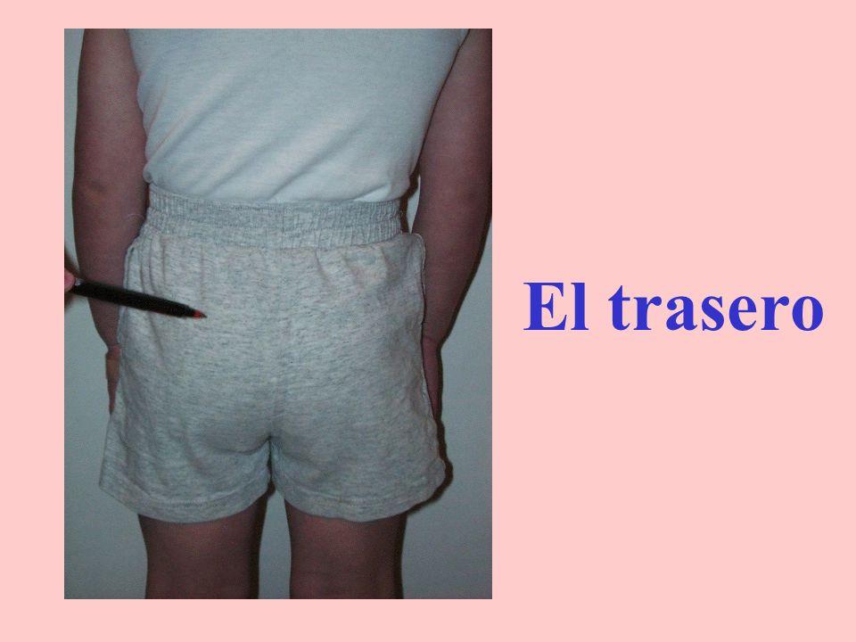 La cintura