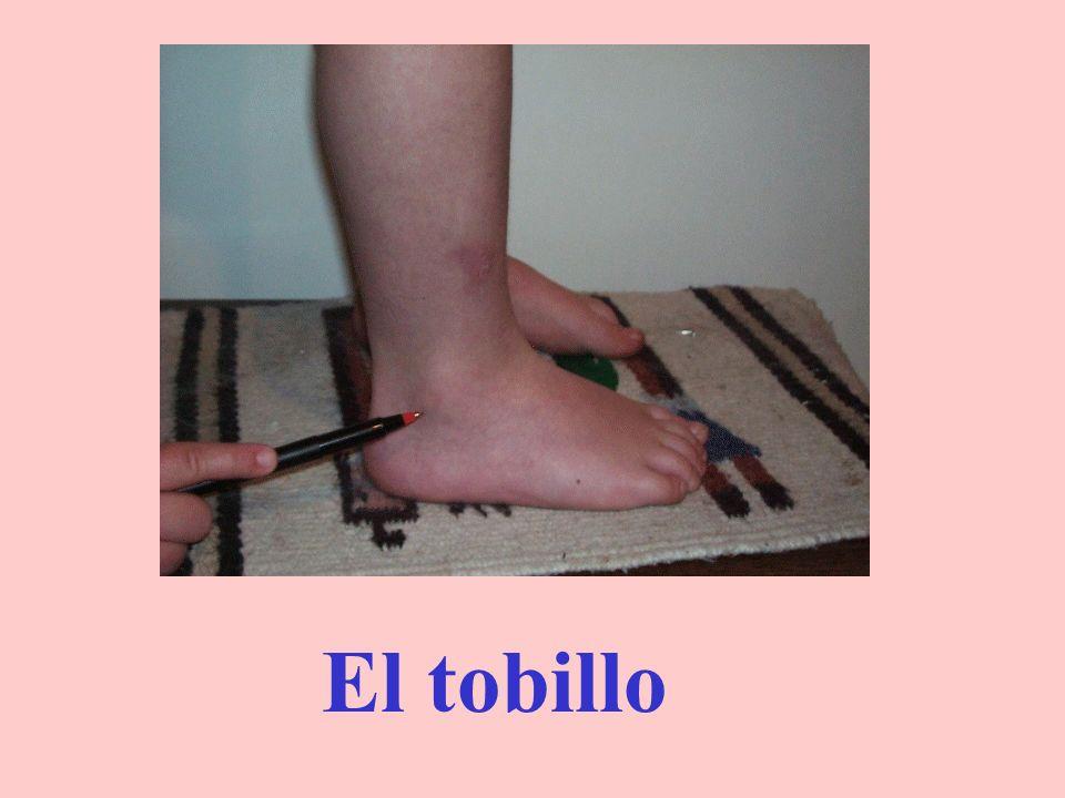 Los pies