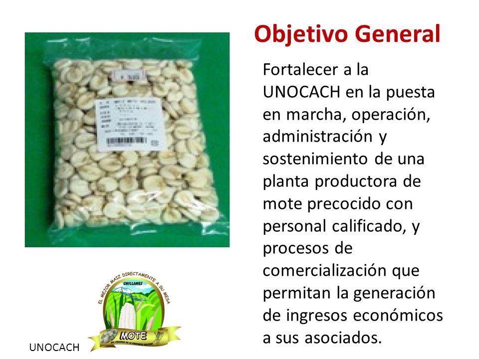 UNOCACH Objetivos Específicos Implementar la planta productora de mote precocido.