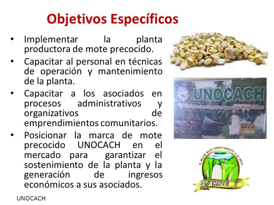UNOCACH Objetivos Específicos Implementar la planta productora de mote precocido. Capacitar al personal en técnicas de operación y mantenimiento de la