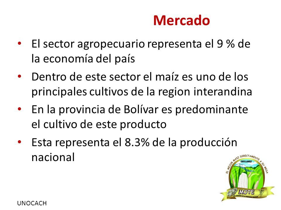 UNOCACH Mercado El sector agropecuario representa el 9 % de la economía del país Dentro de este sector el maíz es uno de los principales cultivos de la region interandina En la provincia de Bolívar es predominante el cultivo de este producto Esta representa el 8.3% de la producción nacional