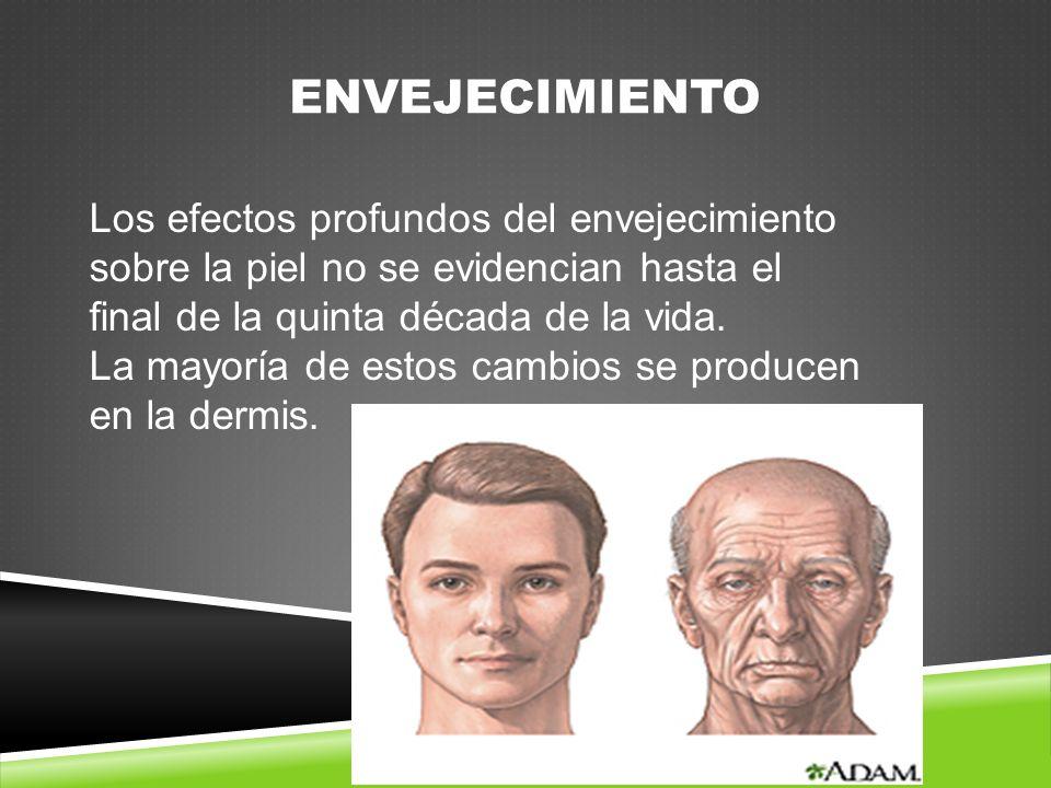 ENVEJECIMIENTO Los efectos profundos del envejecimiento sobre la piel no se evidencian hasta el final de la quinta década de la vida.