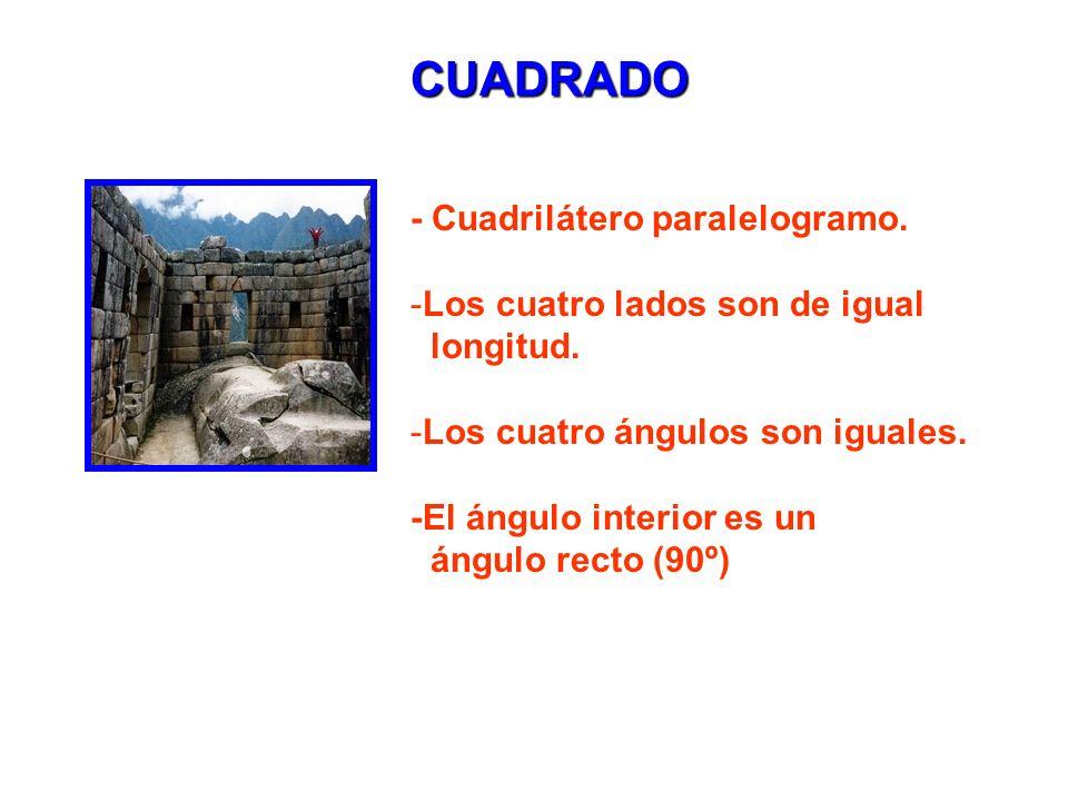CUADRADO - Cuadrilátero paralelogramo.-Los cuatro lados son de igual longitud.