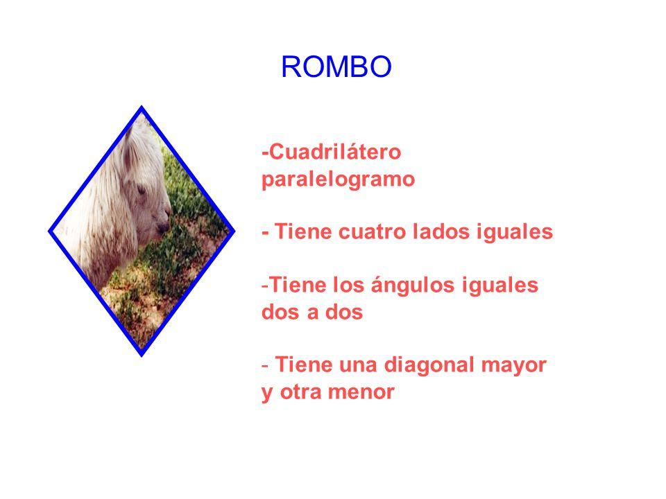 ROMBO -Cuadrilátero paralelogramo - Tiene cuatro lados iguales -Tiene los ángulos iguales dos a dos - Tiene una diagonal mayor y otra menor