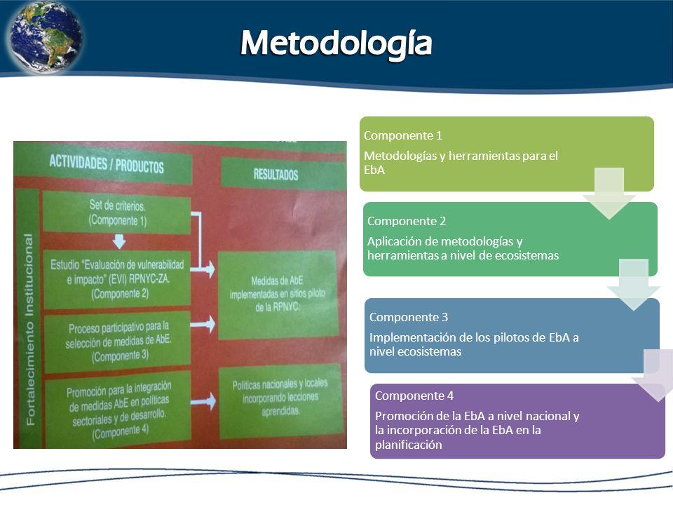 Componente 1 Metodologías y herramientas para el EbA Componente 2 Aplicación de metodologías y herramientas a nivel de ecosistemas Componente 3 Implementación de los pilotos de EbA a nivel ecosistemas Componente 4 Promoción de la EbA a nivel nacional y la incorporación de la EbA en la planificación