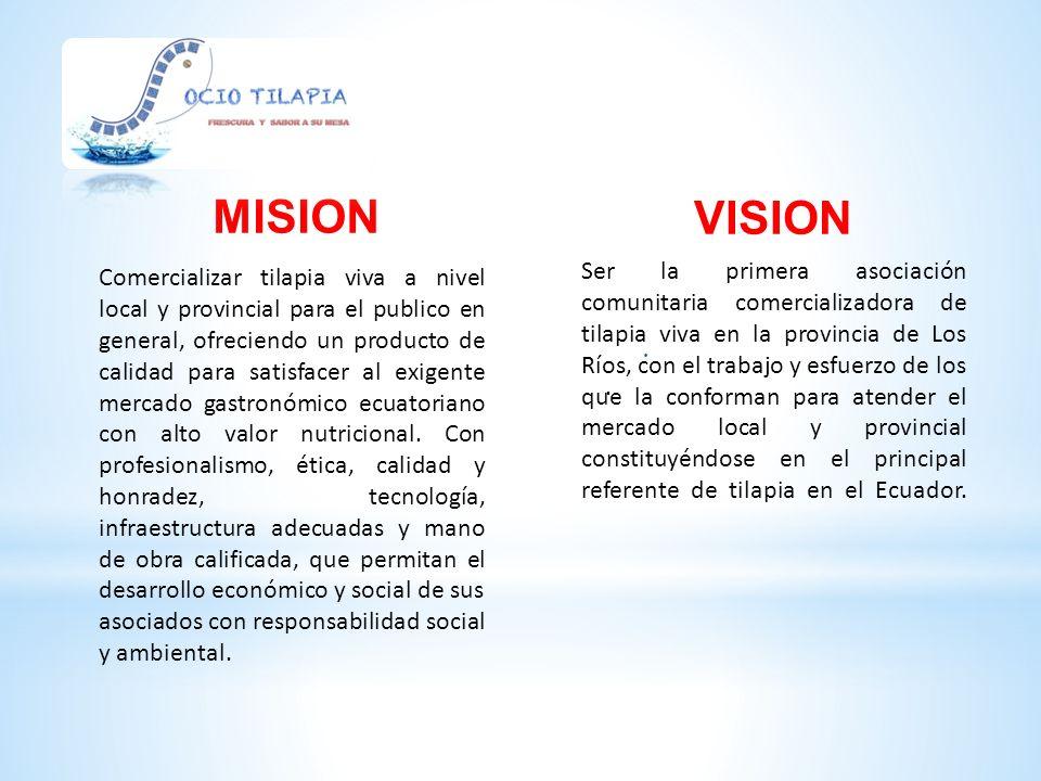 1 Posicionar la marca Socio Tilapia en el mercado local y nacional, con una estructura organizacional adecuada.