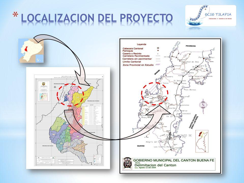 * La demanda actual nacional y mundial de tilapia es creciente.