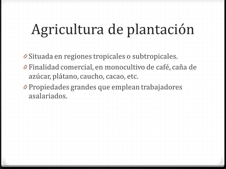 Agricultura de plantación 0 Situada en regiones tropicales o subtropicales.