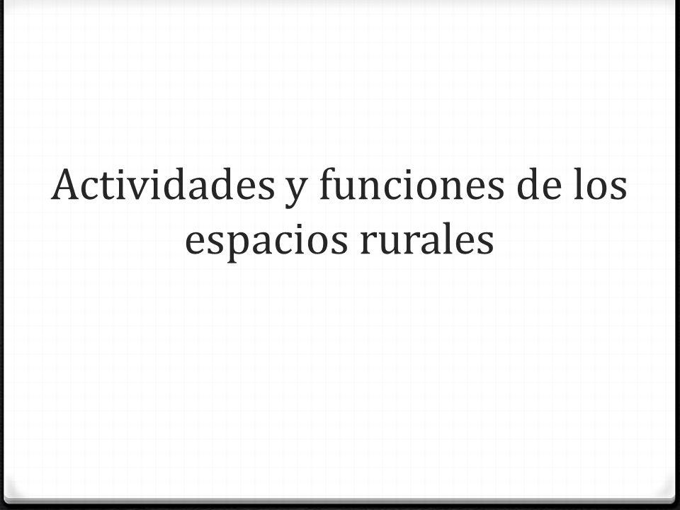 Actividades y funciones de los espacios rurales