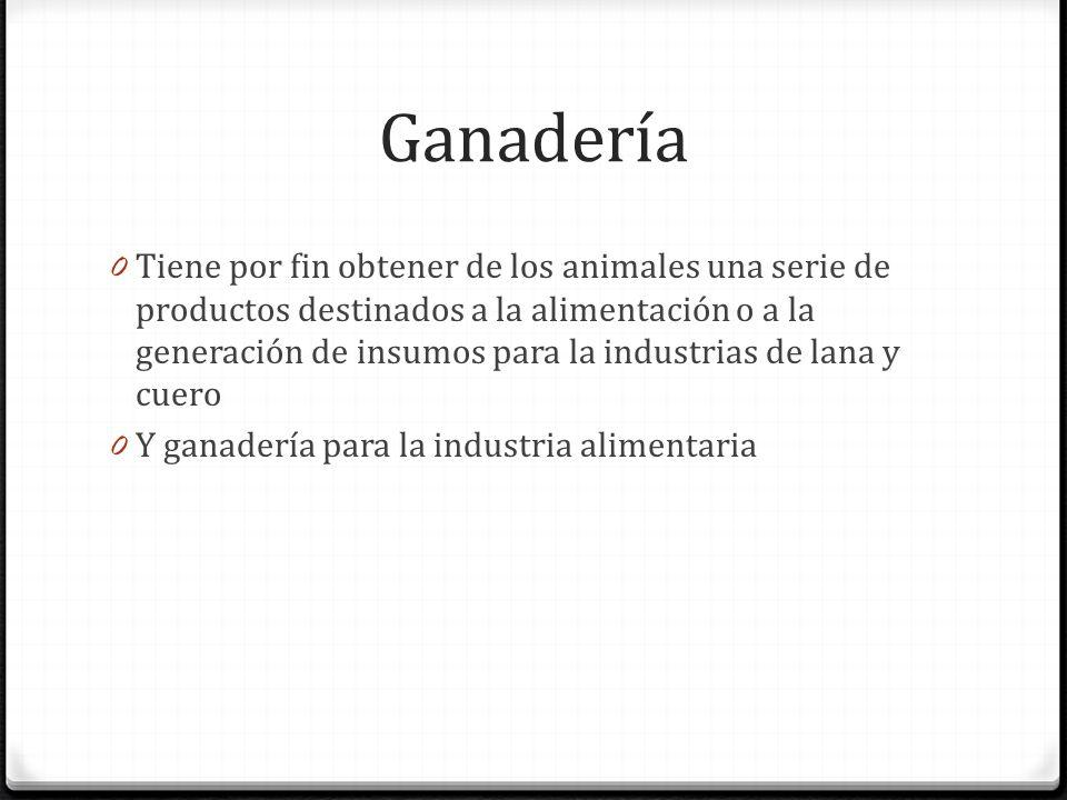 Ganadería 0 Tiene por fin obtener de los animales una serie de productos destinados a la alimentación o a la generación de insumos para la industrias de lana y cuero 0 Y ganadería para la industria alimentaria