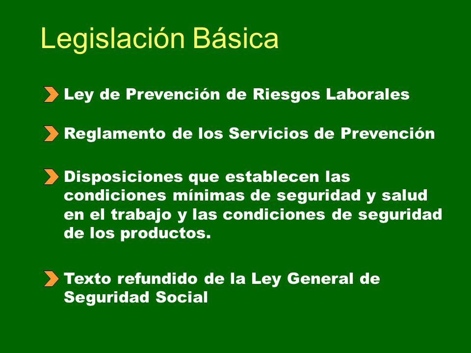 19 de la ley de prevencion de riesgos laborales: