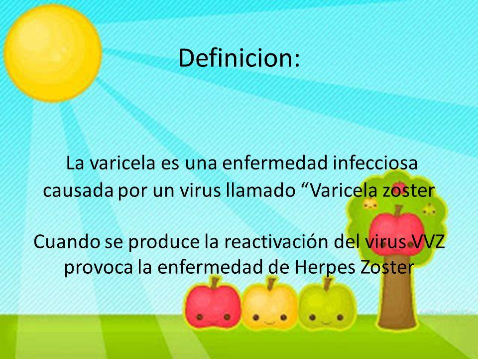 """Definicion: La varicela es una enfermedad infecciosa causada por un virus llamado """"Varicela zoster Cuando se produce la reactivación del virus VVZ pro"""