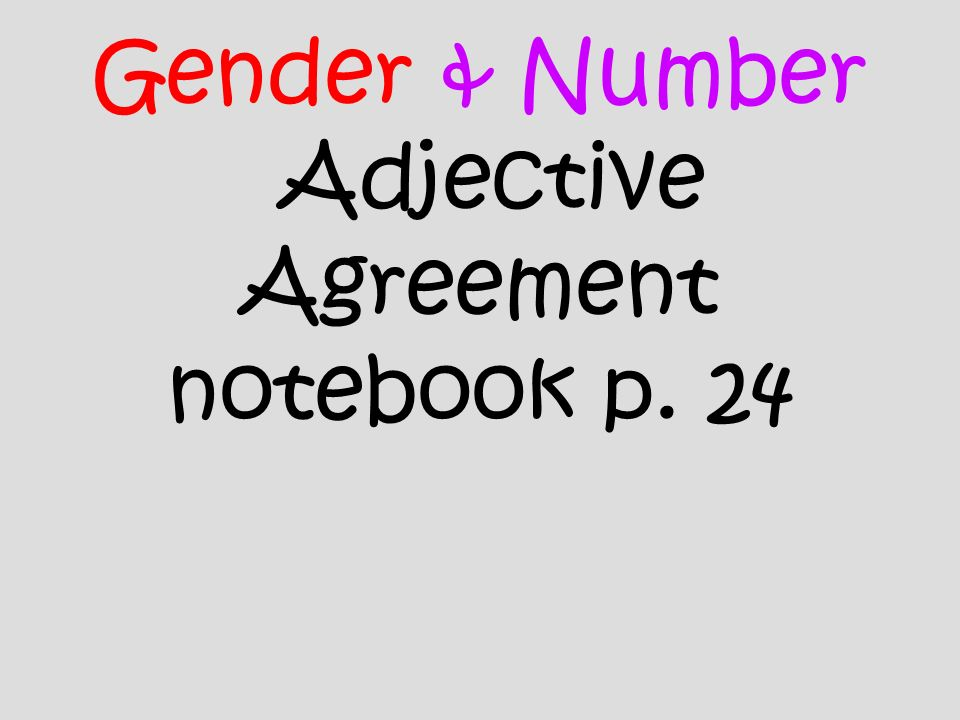 Gender & Number Adjective Agreement notebook p. 24