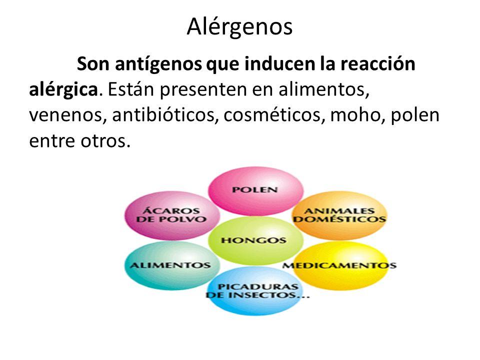 Síntomas Tipo de alergiaSíntomas AsmaDificultad respiratoria momentánea causada por obstrucción de las vías respiratorias RinitisDescarga nasal, estornudos, lagrimeo, conjuntivitis.