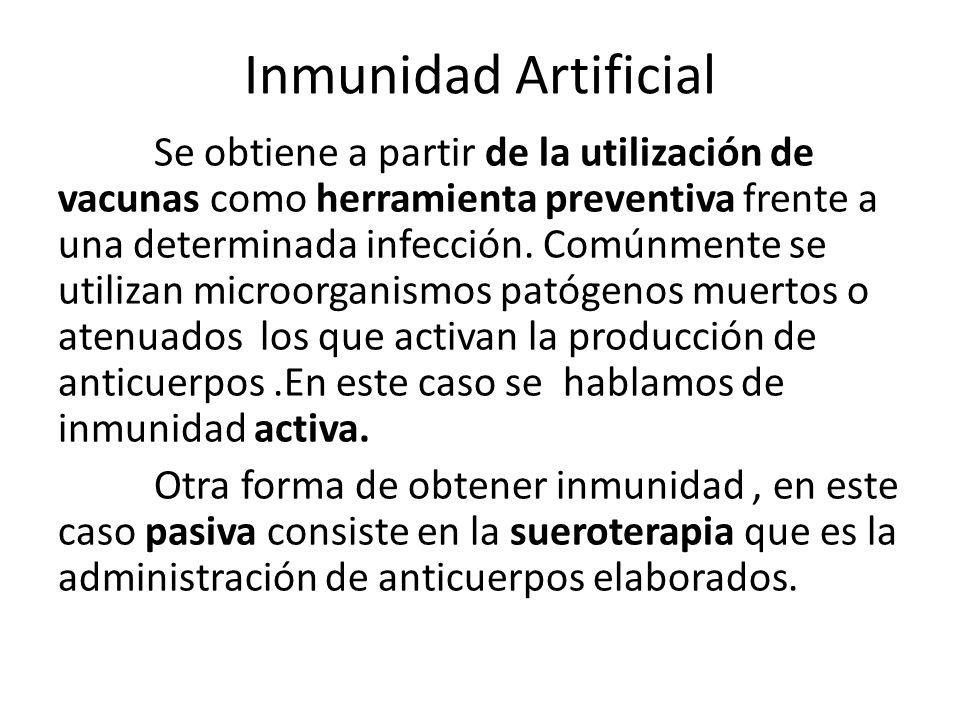 Inmunidad Artificial Se obtiene a partir de la utilización de vacunas como herramienta preventiva frente a una determinada infección.
