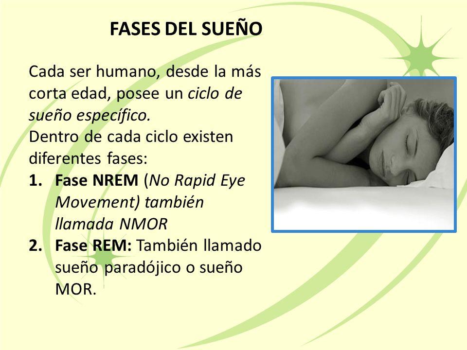 FASES DEL SUEÑO Cada ser humano, desde la más corta edad, posee un ciclo de sueño específico.