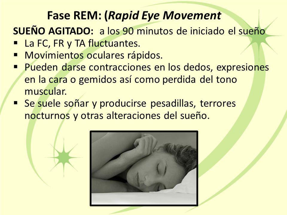 Fase REM: (Rapid Eye Movement SUEÑO AGITADO: a los 90 minutos de iniciado el sueño  La FC, FR y TA fluctuantes.