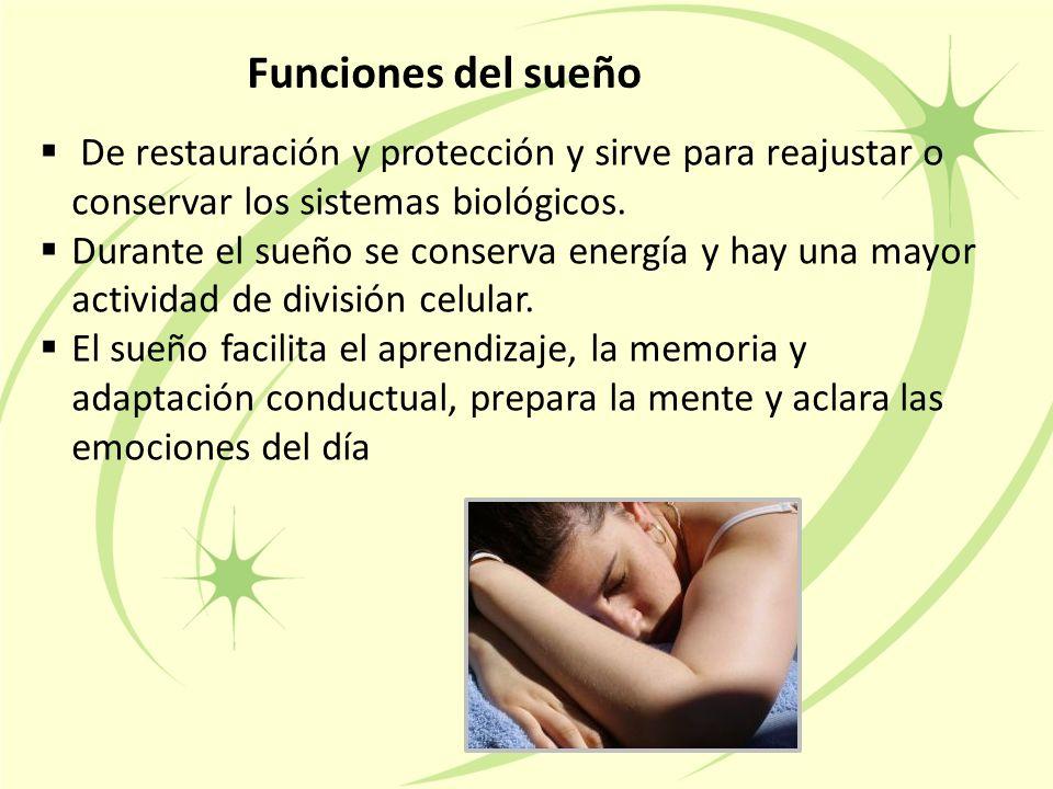 Funciones del sueño  De restauración y protección y sirve para reajustar o conservar los sistemas biológicos.