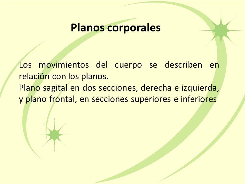 Planos corporales Los movimientos del cuerpo se describen en relación con los planos.