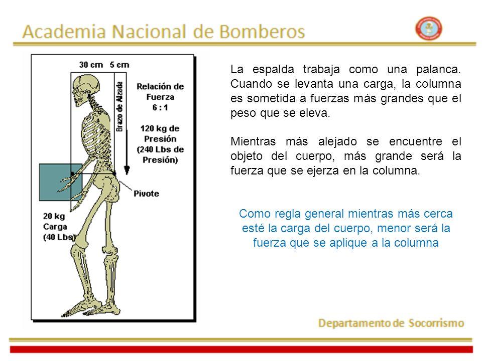 Adoptar la postura de levantamiento Flexionar las piernas manteniendo en todo momento la espalda derecha.