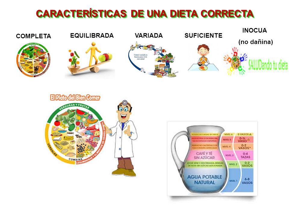 CARACTERÍSTICAS DE UNA DIETA CORRECTA COMPLETA VARIADASUFICIENTE INOCUA (no dañina) EQUILIBRADA