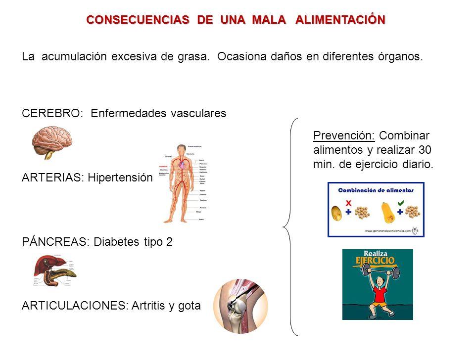 CONSECUENCIAS DE UNA MALA ALIMENTACIÓN La acumulación excesiva de grasa.