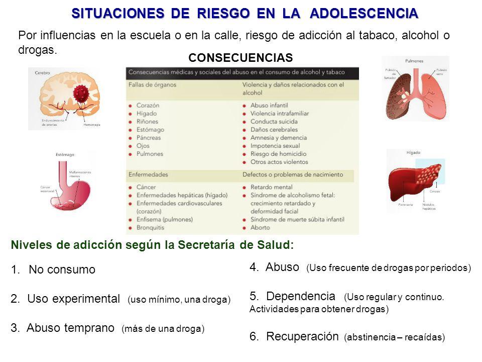 SITUACIONES DE RIESGO EN LA ADOLESCENCIA Por influencias en la escuela o en la calle, riesgo de adicción al tabaco, alcohol o drogas.