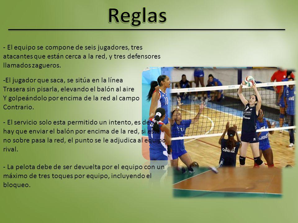 - El equipo se compone de seis jugadores, tres atacantes que están cerca a la red, y tres defensores llamados zagueros.