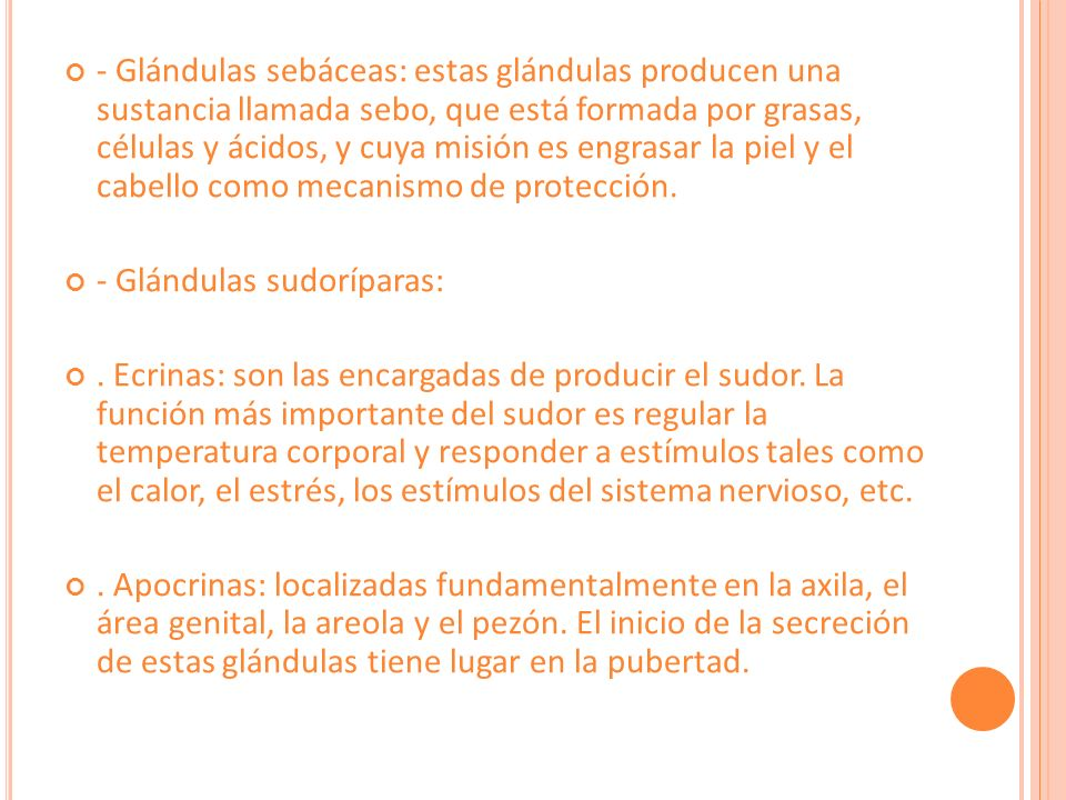 4.Vascularización e inervación de la piel.
