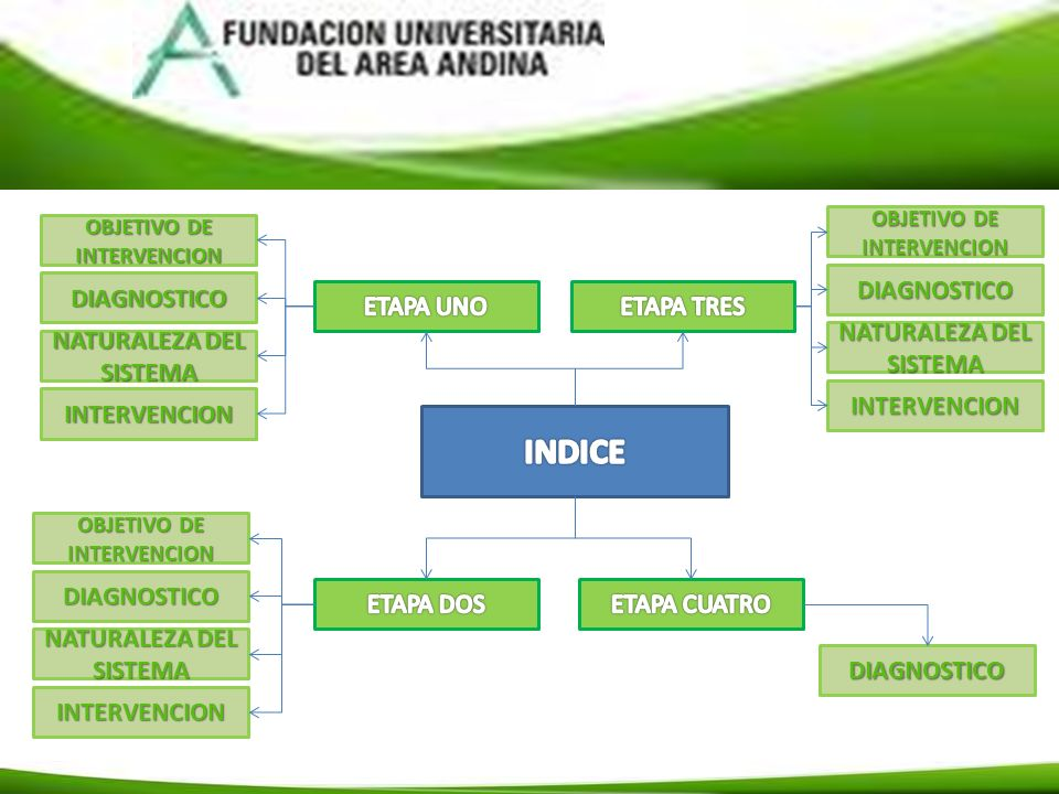 OBJETIVO DE INTERVENCION OBJETIVO PRINCIPAL Identificar la causa principal por la cual se genero infección en las vías respiratorias de la paciente.