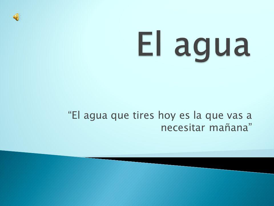  El agua en el planeta sin duda es muy importante e indispensable en la vida cotidiana de todos nosotros.