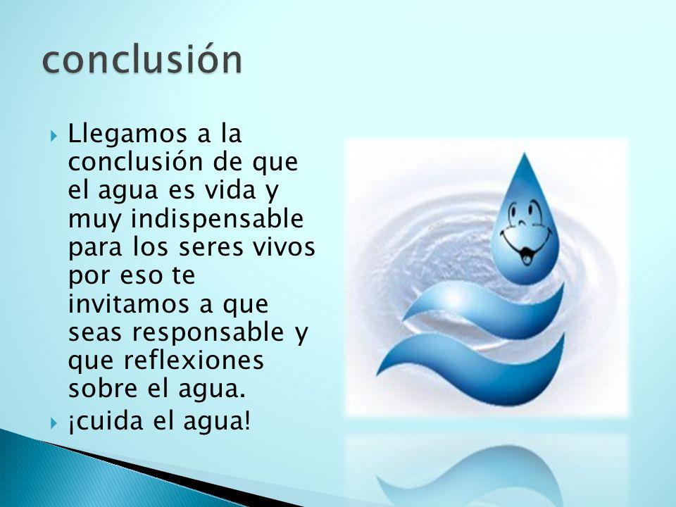  Llegamos a la conclusión de que el agua es vida y muy indispensable para los seres vivos por eso te invitamos a que seas responsable y que reflexiones sobre el agua.
