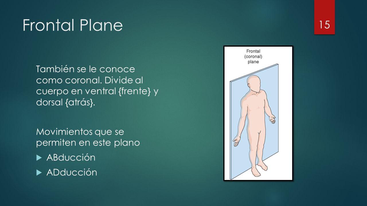 Frontal Plane También se le conoce como coronal.