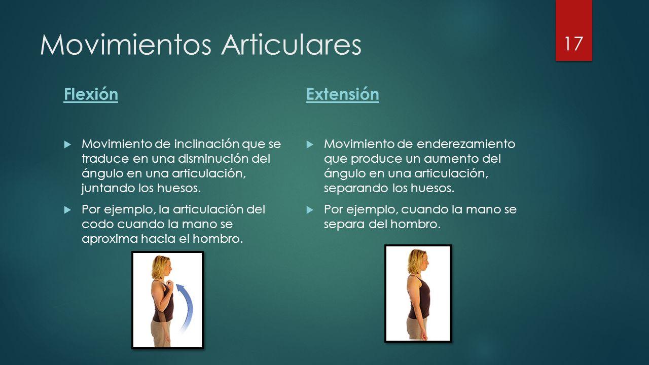 Movimientos Articulares Flexión  Movimiento de inclinación que se traduce en una disminución del ángulo en una articulación, juntando los huesos.