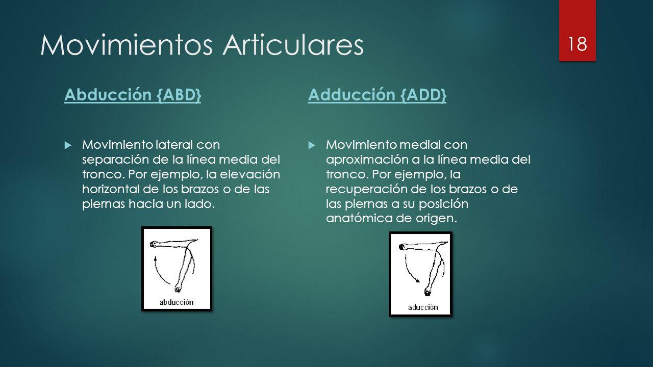 Movimientos Articulares Abducción {ABD}  Movimiento lateral con separación de la línea media del tronco.