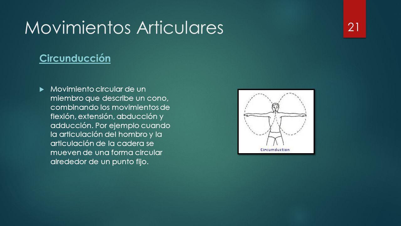 Movimientos Articulares Circunducción  Movimiento circular de un miembro que describe un cono, combinando los movimientos de flexión, extensión, abducción y adducción.