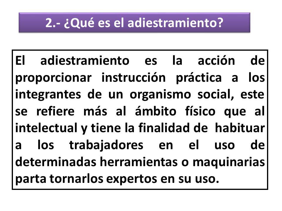 2.- ¿Qué es el adiestramiento.