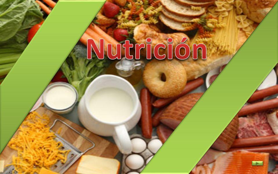 ¿Qué requisitos debe cumplir una dieta para ser equilibrada.