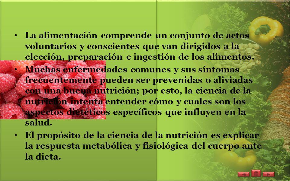 Como mantenerse saludable