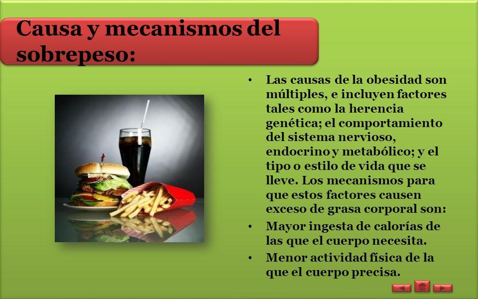 Causa y mecanismos del sobrepeso: Las causas de la obesidad son múltiples, e incluyen factores tales como la herencia genética; el comportamiento del sistema nervioso, endocrino y metabólico; y el tipo o estilo de vida que se lleve.